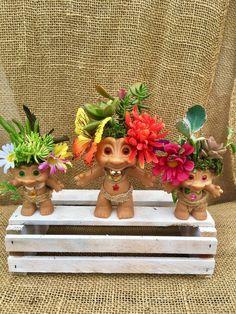 This item is unavailable Cool Succulents, Succulent Planter Diy, Succulent Arrangements, Diy Planters, Fairy Garden Plants, Cactus Pot, Troll Dolls, Potted Plants, Gnomes