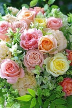 Top bouquet, Spring collection I'd say, lol, love the diverse colors of roses used for this creation, beautifully  mixed with white alstroemeria and other follage.  Bravo, <v>