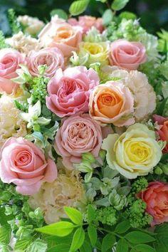 Pale peach, pink, and yellow rose bouquet. Beautiful Flower Arrangements, Floral Arrangements, Beautiful Bouquets, Amazing Flowers, Beautiful Roses, Pretty Flowers, Fresh Flowers, Exotic Flowers, Purple Flowers