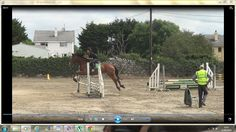 Show Us, Show Jumping, Watch V, Action, Horses, Photo And Video, Youtube, Summer, Animals