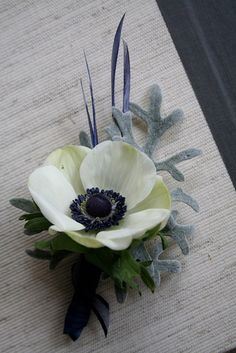 Beautiful boutonniere of anemone, dusty miller, and blue goose feathers.