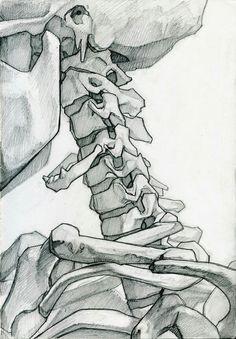Anatomy Drawing Medical Skeleton Studies by James Julier - Anatomy Sketches, Anatomy Drawing, Art Sketches, Art Drawings, Human Anatomy Art, Fish Drawings, Anatomy Study, Life Drawing, Figure Drawing