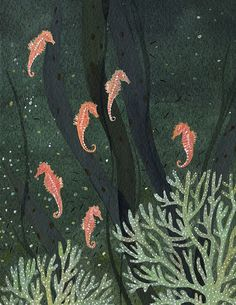 Find images and videos about seahorse, paintin and becca stadtlander on We Heart It - the app to get lost in what you love. Art And Illustration, Nature Illustrations, Seahorse Art, Seahorses, Sea Creatures, Becca, Under The Sea, Painting & Drawing, Folk Art