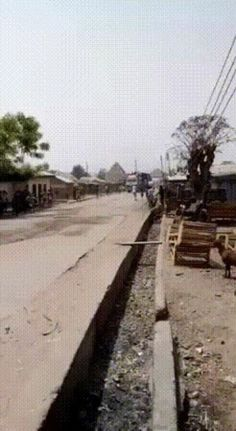 GIF Africa doesn't need buses to transport people Animated Gif, Transportation, Weird, Gifs, Africa, Animation, Gallery, People, Cake