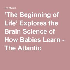 'The Beginning of Life' Explores the Brain Science of How Babies Learn - The Atlantic