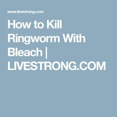 Get Rid Of Ringworm, Warts, Cat Health, Health And Wellness, Bleach, Health Fitness, Cat Health Care