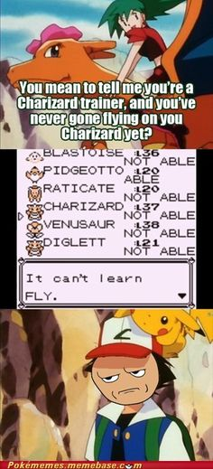 He has wings! Wings I say! #Truth #lols #video #game #Funny #Videogame #Gaming #References #Reality #Real #Life #Joke #Geek #humor #Funny #Pokemon #Nintendo #Laugh #Logic