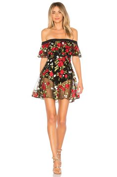 Shop a great selection of Erica Dress Lovers + Friends - women fashion dresses. Find new offer and Similar products for Erica Dress Lovers + Friends - women fashion dresses. Girls In Mini Skirts, Red Skirts, Ruffle Dress, Strapless Dress, Mesh Dress, Dress Red, Women's Fashion Dresses, Dress Outfits, Biker Chick Outfit