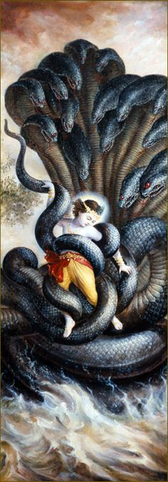 For two hours Kṛṣṇa remained like an ordinary child gripped in the coils of Kāliya, but when He saw that all the inhabitants of Gokula--including His mother and father, the gopīs, the boys and the cows--were just on the point of death and that they had no shelter for salvation from imminent death, Kṛṣṇa immediately freed Himself. He began to expand His body, and when the serpent tried to hold Him, he felt a great strain.