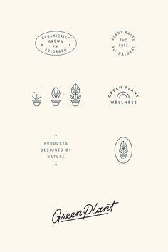 Green Plant Wellness Brand and Packaging Design by Viola HIll Studio branding Brand Identity Design, Graphic Design Branding, Icon Design, Web Design, Modern Design, Brand Design, Layout Design, Minimal Logo Design, Typography Logo