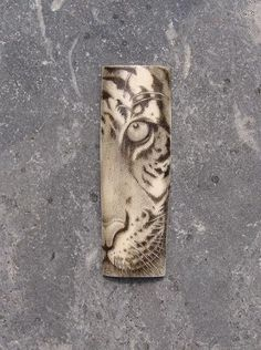 Tiger face fragment scrimshaw