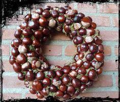 Chestnuts wreath for autumn. Acorn Wreath, Diy Wreath, Ornament Wreath, Diy Christmas Ornaments, Christmas Wreaths, Christmas Decorations, Fun Arts And Crafts, Autumn Crafts, Fall Wreaths