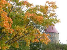 #Paysages de l'Ile aux coudres - #Fleuve #Saint-Laurent - #Charlevoix - #Québec - #Canada - Isle-aux-Coudres