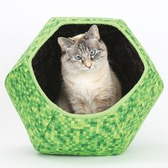 Give your cat a luxurious hidey-hole where he can watch the world go by in comfort. The hexagonal design of The Cat Ball creates a stylish and unusual nook with thick, padded walls—it's the perfect spot for naps, games, and hiding away when the world just gets too much! $50, TheCatBall.com