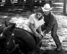 Robert Redford and Scarlett Johansson in The Horse Whisperer (1998)