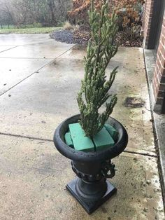How to Make Winter Porch Pots - A step-by-step guide showing you how to make gorgeous winter porch pots that will last beyond the holidays! Outdoor Christmas Planters, Christmas Urns, Front Door Christmas Decorations, Rustic Christmas, Winter Decorations, Primitive Christmas, Holiday Wreaths, Christmas Christmas, Seasonal Decor