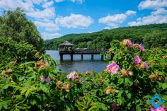 Canton, River, Mansions, The Originals, Usa, House Styles, Outdoor, Paths, Travel