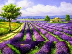 Painting Calligraphy lavender paintings by number on canvas with acrylic paints modular picture for living room home decor Landscape Art, Landscape Paintings, Landscape Pictures, Belle Image Nature, Foto Art, 5d Diamond Painting, Lavender Fields, Creative Art, Painting & Drawing