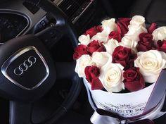Audi la jolla, beautiful flowers, dream cars, cars and motorcycles, guc Allroad Audi, Black Audi, Luxury Lifestyle Fashion, Car Goals, Audi Sport, Stylish Girl Pic, Mercedes Benz Amg, Audi Cars, 500 Calories