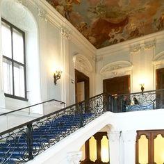 Le palais de Sissi #wien #sissiimperatrice #history #schonbrunn #viennahistory #castle #visitvienna #austriancastles Album Photos, Le Palais, Sissi, Vienna, Castle, Stairs, History, Home Decor, Ladders