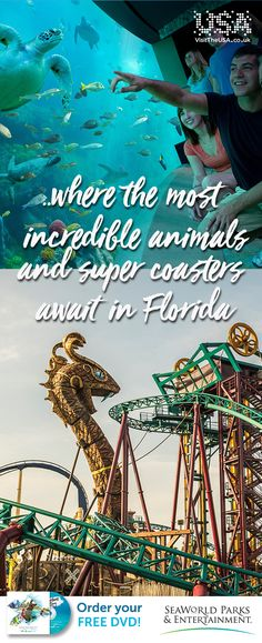 Meet amazing marine animals and jump into their world on sensational rides, attractions and shows.