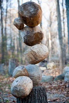 Hmmm... What to do with tree stumps in the yard... Make a tree-trunk sculpture