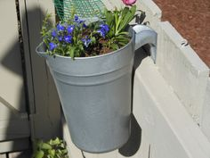 Turn Inexpensive Plastic Pitchers into Temporary Gardening Containers!