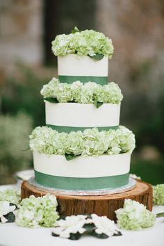 picture this cake with periwinkle ribbon and blue, purple and green hydrangeas!