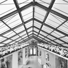 When your dream turn to dust vacuum.  #vscogood #inspiration #igdaily #keukenhof #holland #igers #travelgram #trip #traveling #flowers #flower #l4l #l #like4like #likeforlike #blackandwhite #photooftheday #photo #photography by tschernyschova