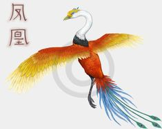 This is the Chinese Feng-Huang. It is also a firebird, or phoenix. Again, it would be in control of the light, and possibly considered a god to some. Clearly from the picture it resembles our classic description of a phoenix, with its gold and red feathers. It also looks like a crane of sorts, which was a common bird in China. Mythological Creatures, Mythical Creatures, Mythical Birds, Common Birds, Chinese Mythology, Red Feather, Sci Fi, Fantasy, The Originals