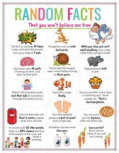 50 Random Facts that you Won't Believe are True. Fun Facts For Kids, Activities For Kids, Interesting Facts For Kids, Fun Fact Friday, Lunch Box Notes, Fact Of The Day, Did You Know Facts, How To Start Conversations, Science Facts