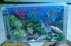 A Small Hearts Desire: Tic Tac Fish Aquarium. Not a bad idea. Not executed wonderfully perhaps, but a good plan.