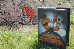 Activity idea for Creepy Carrots by Aaron Reynolds, Peter Brown via www.happybirthdayauthor.com