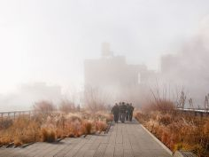A early morning exploration along the High Line in New York Cityduring a uniquely foggy weather system reveals rare and seldom seen views of Manhattan Highline Nyc, High Line, Jersey City, Perennials, Country Roads, Behance, Explore, Landscape, Architecture