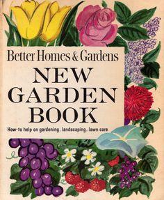 New Garden Book / hand painted illustration