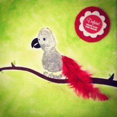Grijze roodstaart papegaai...