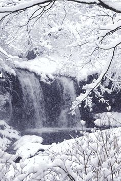 Waterfall in Winter-gif Winter Pictures, Colorful Pictures, Gif Pictures, Moving Pictures, Meas Vintage, Winter Szenen, Winter White, All Nature, Nature Gif