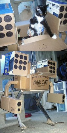 """""""Meow meow, motherfuckers!"""" Oh man, and here I thought the cardboard tank I saw online was bad enough! THIS is the LAST weapon we need to let the felines have at their disposal! O_O"""