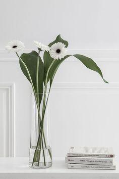 Ideas For Flowers Arrangements Simple Vase Planters Flower Arrangements Simple, Vase Arrangements, Flower Vases, Centrepieces, Ikebana, Plant Aesthetic, Flower Aesthetic, White Flowers, Beautiful Flowers