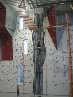 Mur d'escalade fixe ROCKIT Walltopia avec parcours ! Climbing