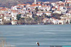 Εικόνες από National Geographic ζούμε τις τελευταίες ημέρες στην Καστοριά. Θεωρούσα απίστευτο το...