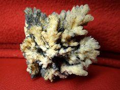Minerale si flori de mina: ianuarie 2012