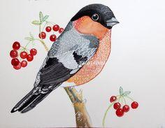 Bull Finch Bird Art Bird Wall Art Room Decor por sublimecolors, $29.99