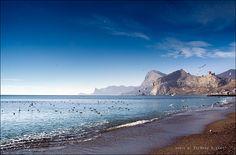 Судак-Новый Свет / природа, горы, пейзаж, птицы, море, крым, времена года, приключения, судак, сокол, мой мир, зимовка