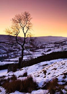 Swaledale Snow, Yorkshire Dales. Looking down over Swaledale, near Gunnerside as the valley is filled with wintry purple light after sunset. By John Patrick