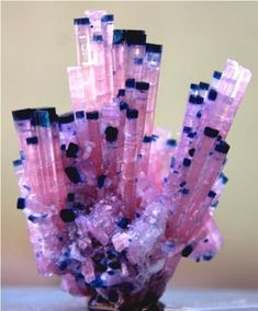 Pink blue cap tourmaline bunch Wow this is rare! Minerals And Gemstones, Rocks And Minerals, Crystal Magic, Crystal Cluster, Quartz Crystal, Beautiful Rocks, Mineral Stone, Rocks And Gems, Stones And Crystals