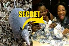 Are you unhappy with your current financial situation and in desperate need of cash? There's nothing worse than working hard at a job and watching your entire pay check get devoured by bills. Let's face it, after a while, it can become depressing. CONTACT CHIEF EZRA FOR HUGE MONEY SPELL +27810648867 Money Spells That Work, Candle Spells, Port Elizabeth, My Money, Depressing, Working Hard, Spelling, Magic, Face
