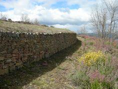 Castro de Borrenes (Borrenes). Asentamiento castreño prerromano. Paisaje cultural de Las Médulas.