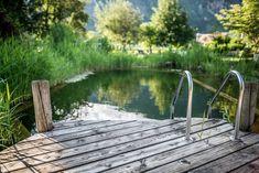 Genießen Sie eine Auszeit vom Alltag und entspannen in einer unserer Ruheoasen bei unserm Naturschwimmteich.