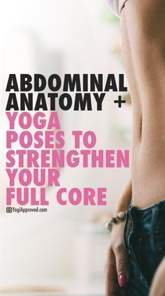DownDog Yoga Poses for Fun & Fitness: Abdominal Anatomy + Yoga Poses to Strengthen Your Full Core